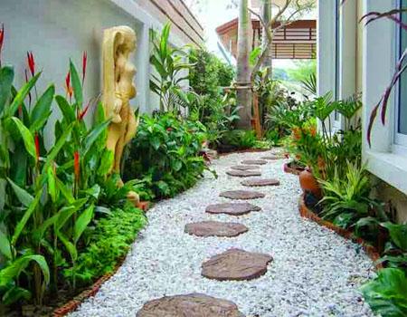 Hướng dẫn chọn cây trồng quanh nhà theo hướng
