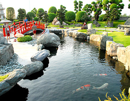 Có nên làm hồ cá trong sân vườn không?
