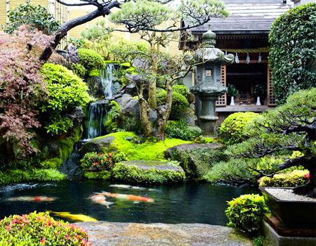 Những điều bạn nên biết khi làm tiểu cảnh sân vườn ?