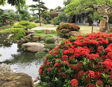 Thi công sân vườn đẹp và uy tín