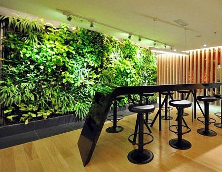 Làm tường cây xanh đẳng cấp giá rẻ