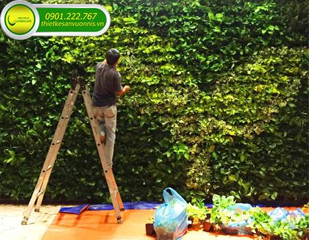 Chuyên làm tường cây xanh đẹp đẳng cấp