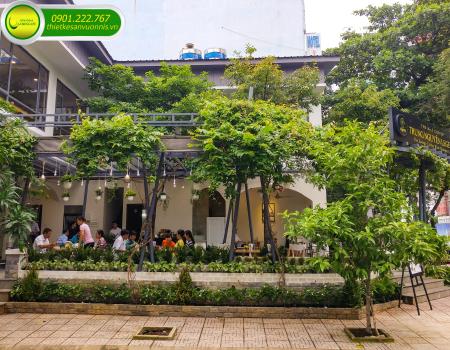 Thi công trồng cây xanh cho quán café sân vườn