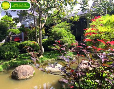Thi công tiểu cảnh sân vườn theo phong cách Nhật