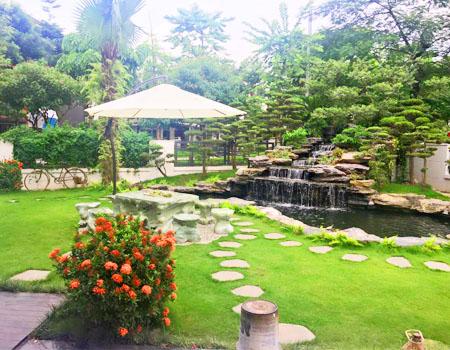 Thi công tiểu cảnh sân vườn đẹp